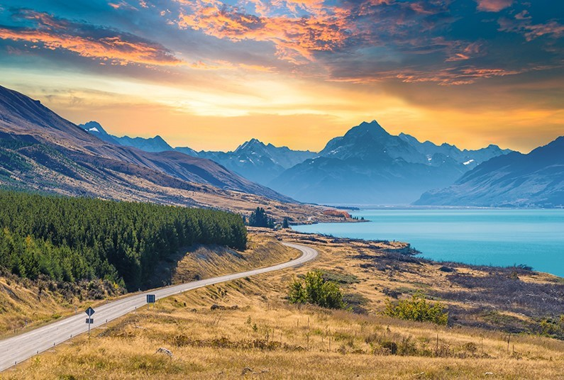Go Your Own Way in Beautiful New Zealand