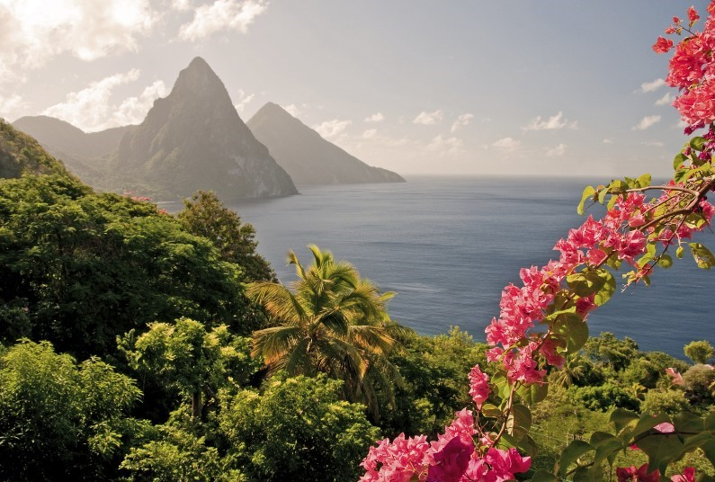 A Week in St Lucia