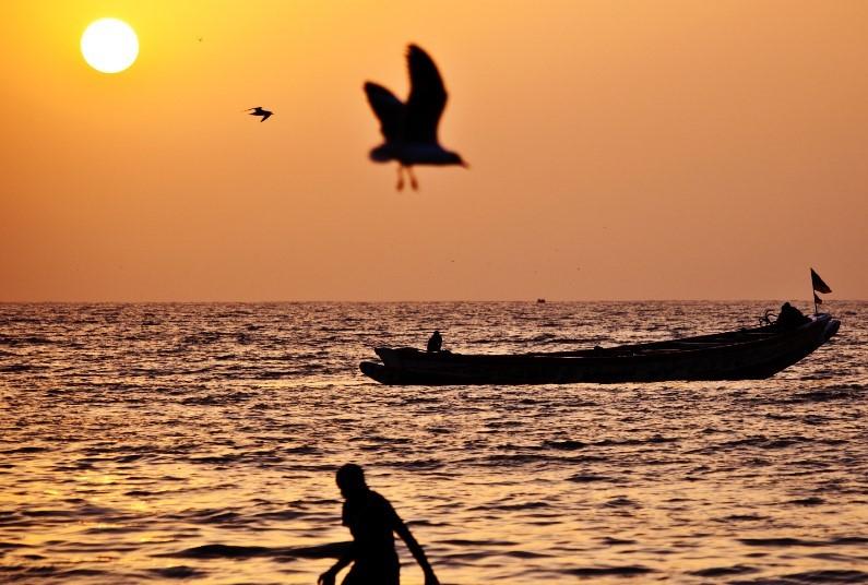 Beachfront in the Gambia