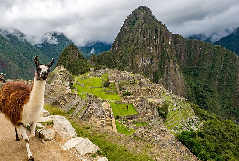 15 night South American adventure cruise