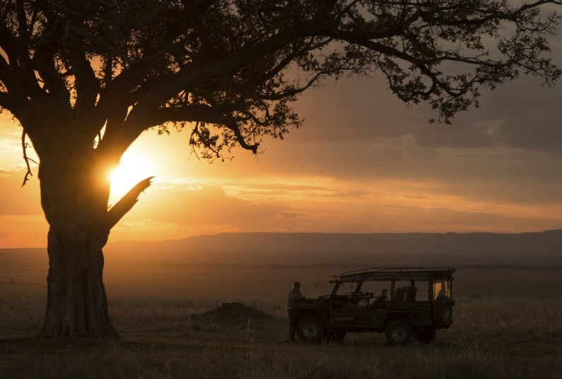 Hunt For The 'Big Five' Of African Wildlife