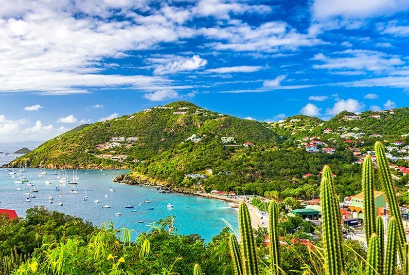 A Caribbean Cruise to Remember