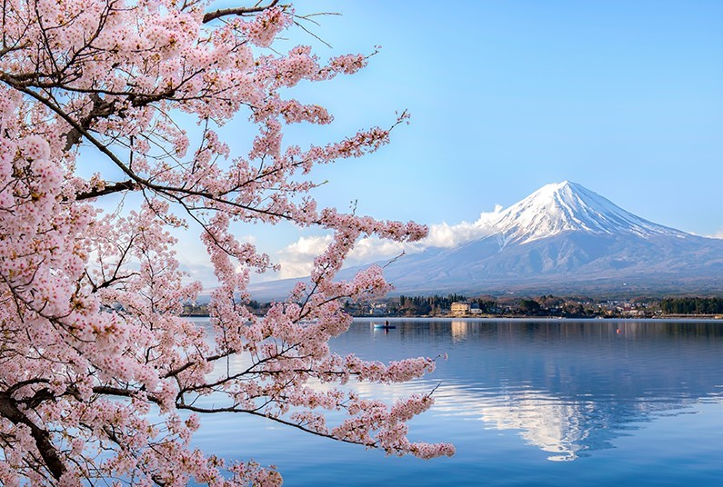Spring into Japan on a Luxury Cruise
