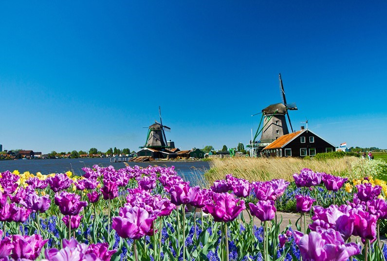 8 day European river cruise