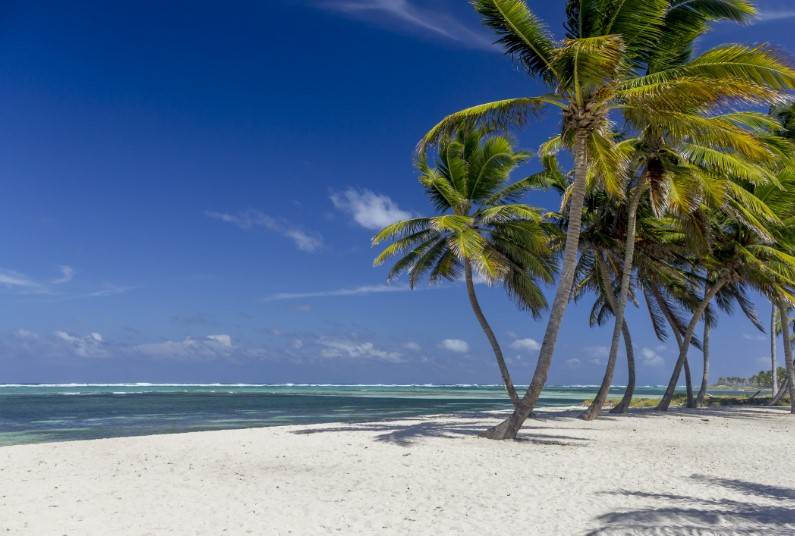 5* All Inclusive, Punta Cana, Save Up To £350 Per Person