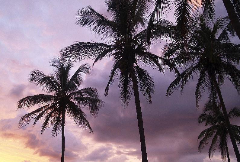 2020 Beachfront Relaxation