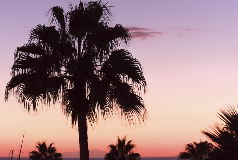 4* All Inclusive in Tenerife