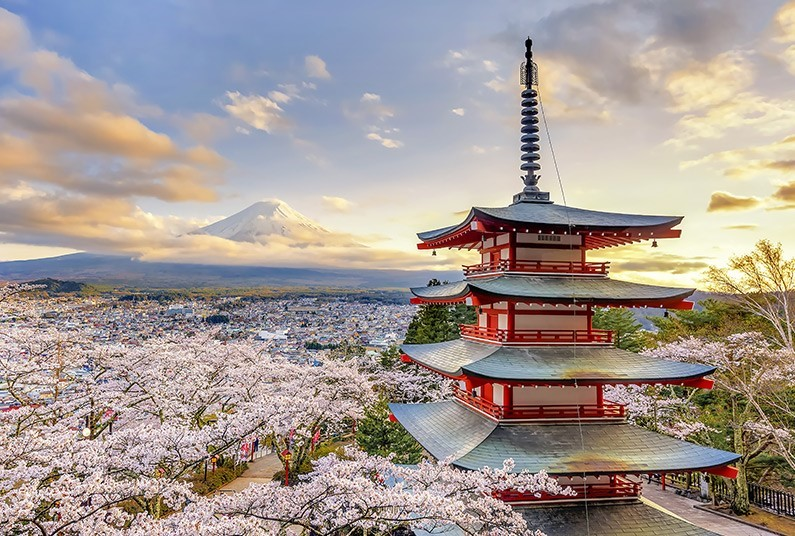 Fully inclusive 11 day Japan tour