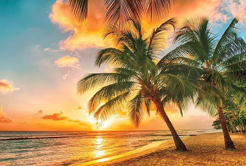 14 night Luxury Caribbean Cruise