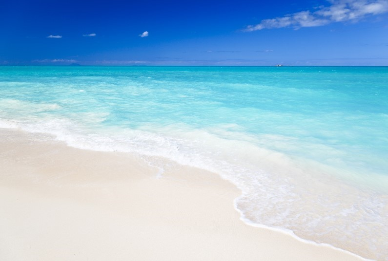 Caribbean Sunshine, Book Soon!