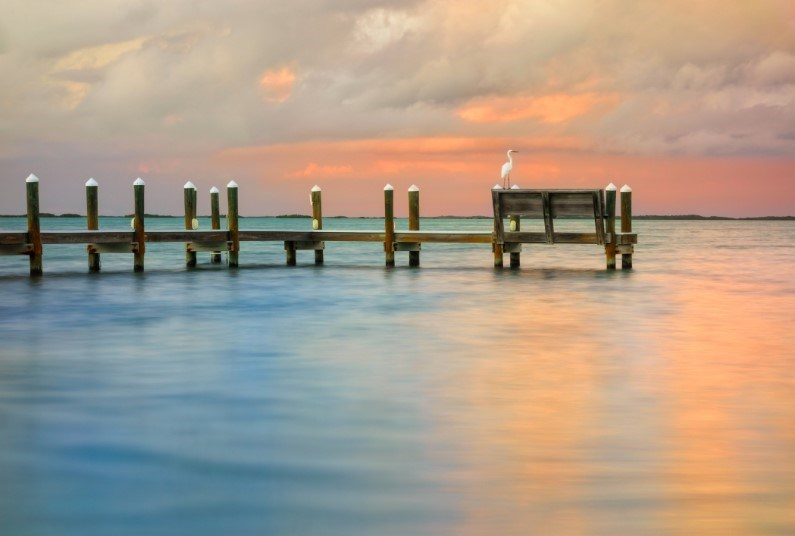 Spend A Week Visiting Key Largo In The Keys
