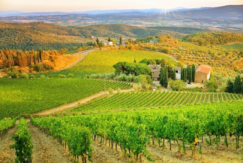 Opera & Chianti Wine Tour, Save £422 Per Couple