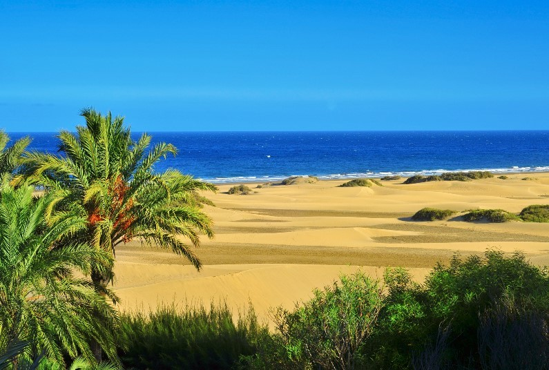 Maspalomas, Late Deal, Depart Next Month
