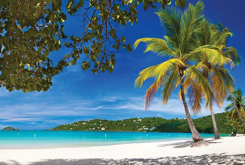 Admire the Caribbean's Tropical Paradise