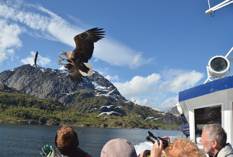 12 Day Norway Cruise Including a FREE camera!