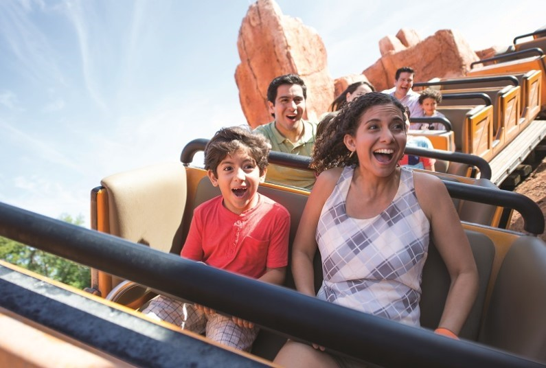 Amazing Walt Disney World in Orlando family offer!